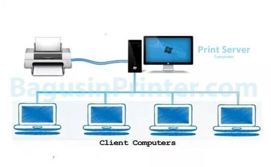 Fungsi dan Cara Setting Print Server