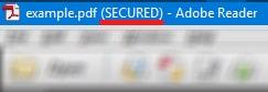 Secured file pdf